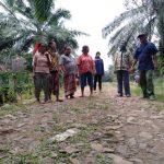 Warga Transtanjungan Herpakan Pemkab Lamsel Lanjutkan Pembangunan Jalan Penghubung Antar Kecamatan