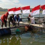 Di Hari Kemerdekan RI ke-75, Rumah Zakat Tebar 17.000 Benih Ikan di Desa Berdaya