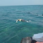 Warga Rajabasa Di Gegerkan Dengan Penemuan Mayat Anonim Di Laut Sebuku