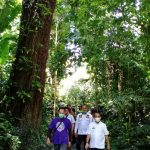 Taman Wisata Alam Sibolangit Kembali Dibuka