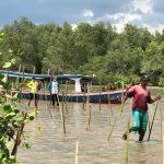 Dorong Pemulihan Ekonomi Nasional, KUB Bintang Terang Tanaman Mangrove Seluas 10H