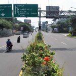 PSBB Jawa Bali Efektif Cegah Corona