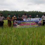 Kapolsek Abung Timur Tinjau Desa Sido Mukti Kesiapan Rencana Kampung Tangguh