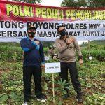 Peduli Penghijauan Polres Way Kanan Gelar Tanam Pohon