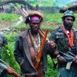 Mendukung Penumpasan KKB Papua