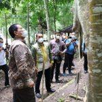 Gubernur Arinal Launching Pusat Inkubasi Tanaman Nusantara di Tahura Wan Abdul Rachman