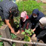 Penanaman Bibit Sayuran di Kelurahan Merjosari RT 5 RW 2