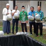 Bupati Tulang Bawang, Melalui Dinas Perikanan Berikan Bantuan Benih Ikan Lele