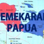 Pemekaran Wilayah Papua Langkah Tepat