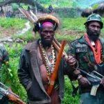 Mendukung Penegakan Hukum Terhadap Kelompok Separatis Papua
