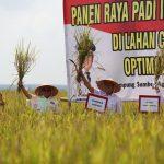 Arinal Berharap Petani Dapatkan Kemudahan Penuhi Kebutuhan Bercocok Tanam