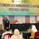 Pertemuan Aksi Konvergensi Stunting 2021, Provinsi Lampung Targetkan Penurunan Angka Stunting Hingga 14 Persen di Tahun 2024