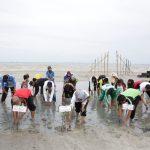 Upaya Pelestarian Mangrove Di Pantai Mutiara Baru