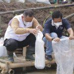 Wabup Pringsewu Tebar Benih Ikan Nila di Kedung Wungu, Rejosari
