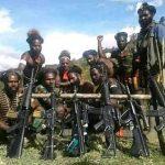 Aksi KST Bentuk Kejahatan HAM di Papua