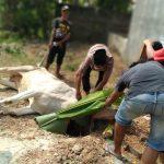 Warga Komplek Perum BW & GAS Pringsewu Potong Hewan Qurban