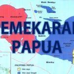 Pemekaran Wilayah Papua Mempermudah Akses Kesehatan dan Pendidikan