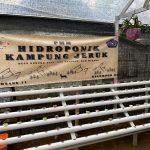 Mahasiswa PMM UMM Gelombang 11 Kelompok 02 Membuat Alat Hidroponik di Green House Desa Gunung Sari