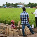 Food Estate Strategi Memajukan Pertanian Indonesia