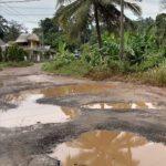 Jalan Katibung Rusak Parah, HIPMI Lamsel : Tolong Di Perhatikan Katibung Ini